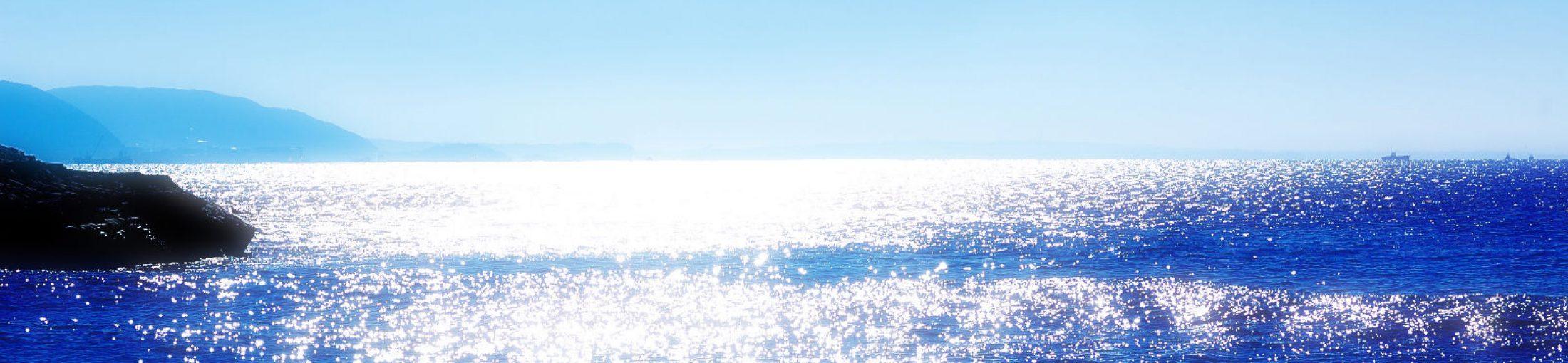 SURF ラボ